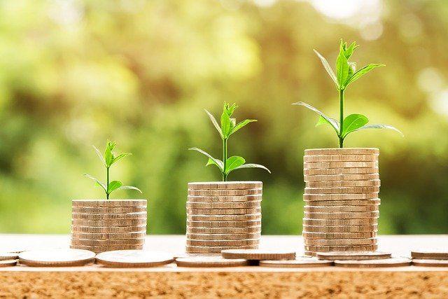 Mynt staplade på varandra och ur dem växter gröna växter
